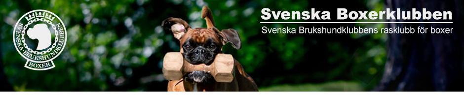 Svenska Boxerklubben